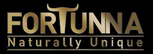 2venture - Fortunna